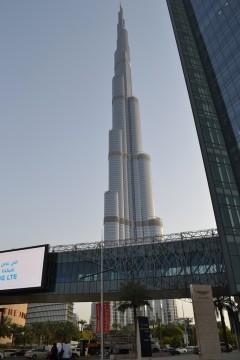 Dubai nou 17