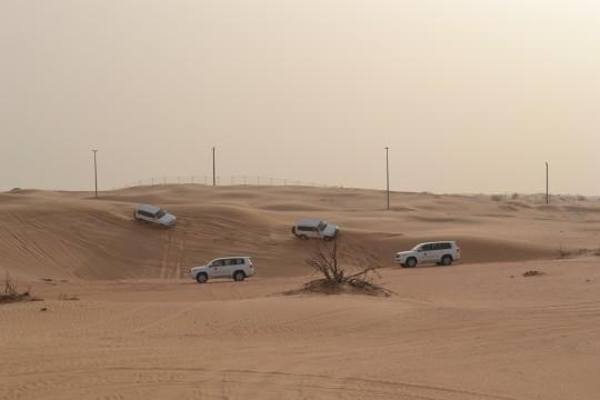 Dubai_Desert safari 15