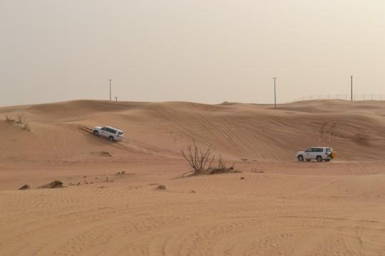 Dubai_Desert safari 16