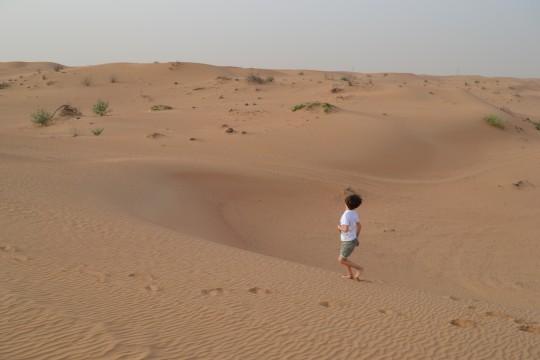 Dubai_Desert safari 20