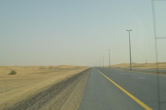 Dubai_Desert safari 3