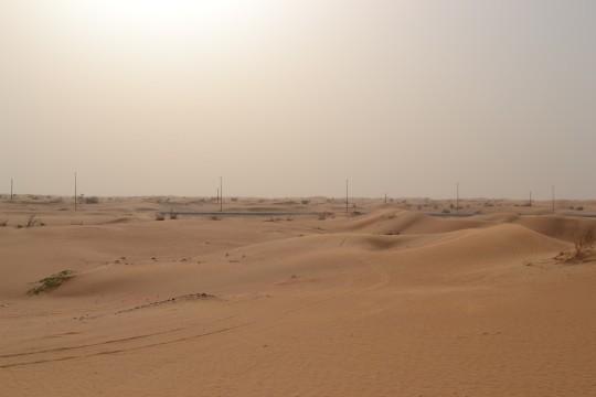 Dubai_Desert safari 4