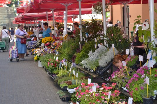 Zagreb_Dolac Market 2