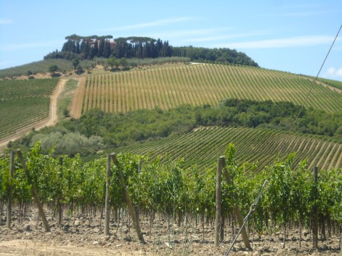 Toscana 11