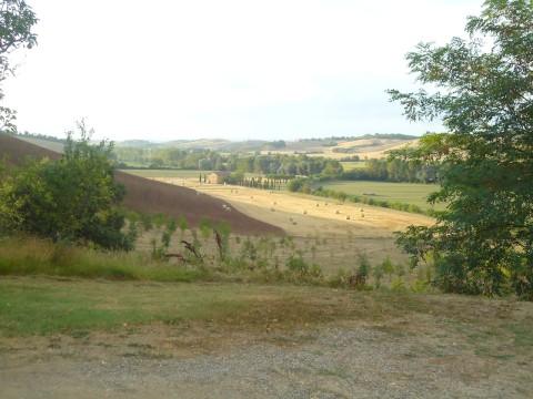Toscana 20