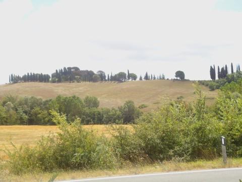 Toscana 22