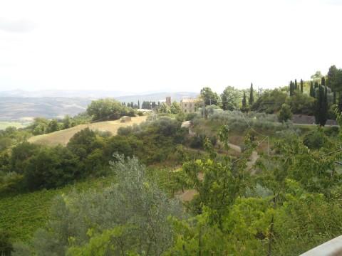 Toscana 26
