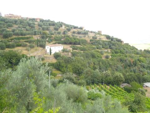 Toscana 29