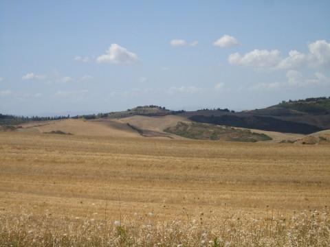 Toscana 36