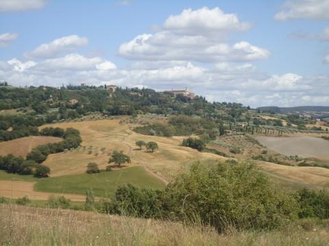 Toscana 37
