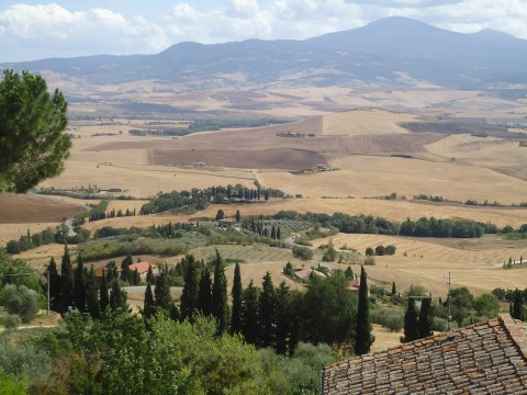 Toscana 41