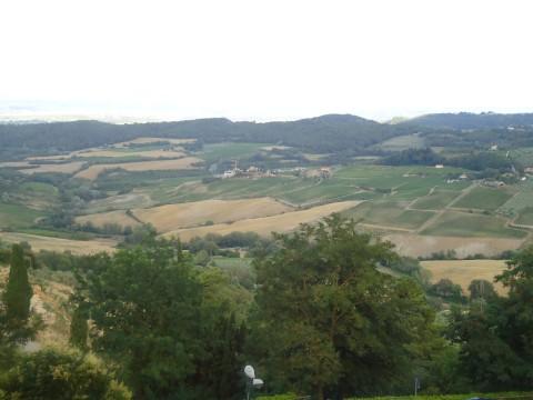 Toscana 46