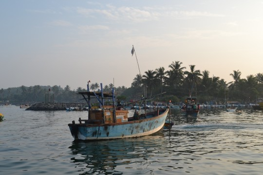 Sri Lanka 18