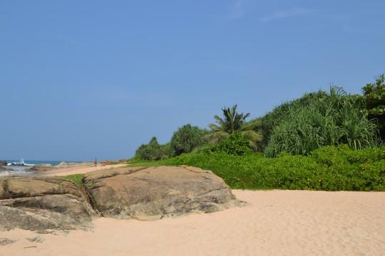 Sri Lanka_Bentota 18