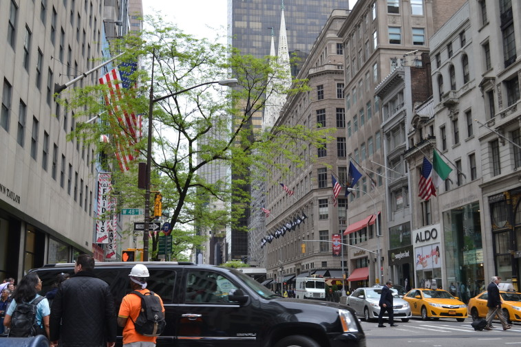 NYC_Fifth Ave 10