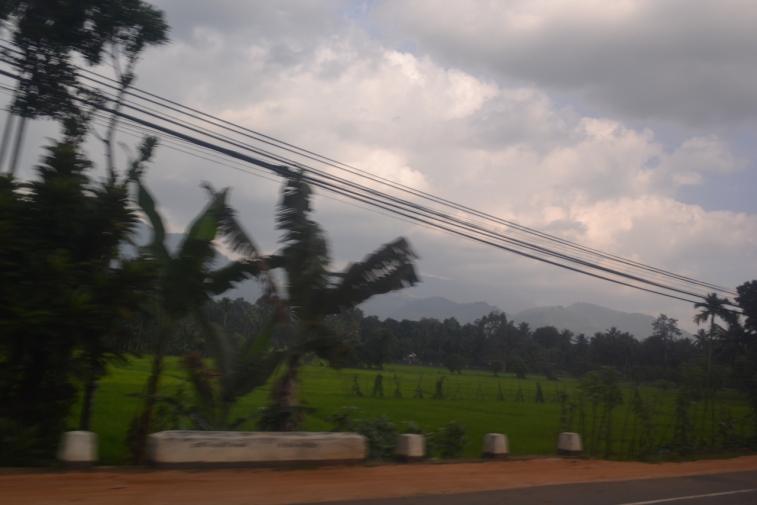 Sri Lanka 13_19