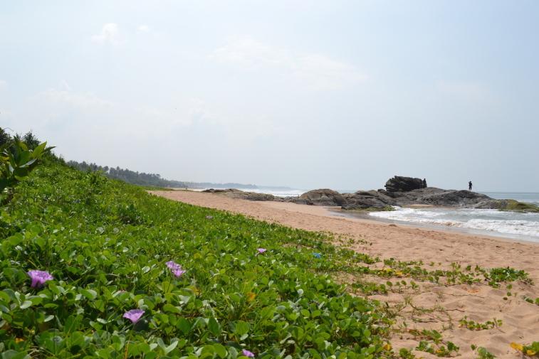 Sri Lanka 13_7