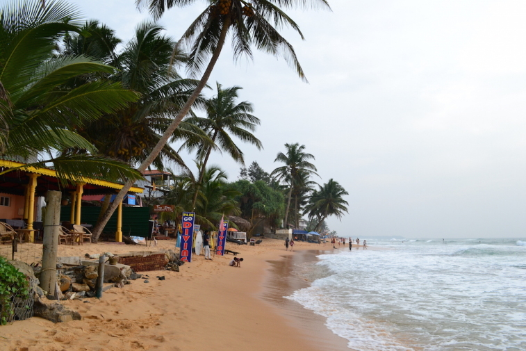 Sri Lanka 2014_11