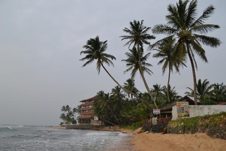 Sri Lanka 2014_13