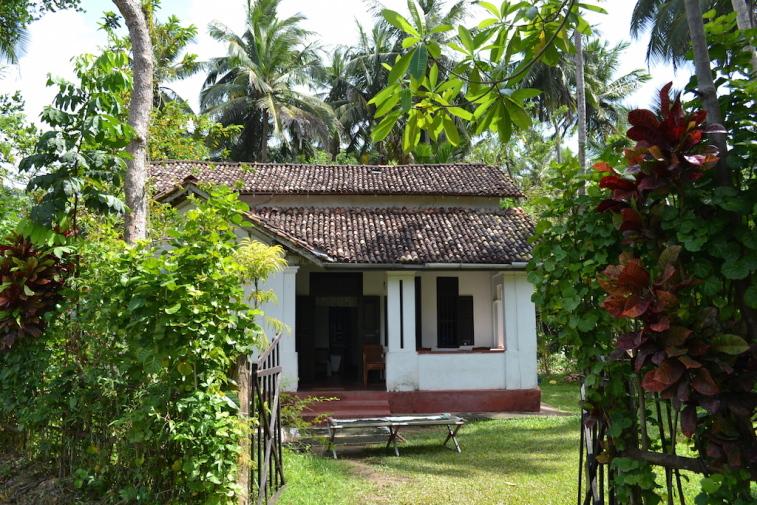 Sri Lanka 2014_3
