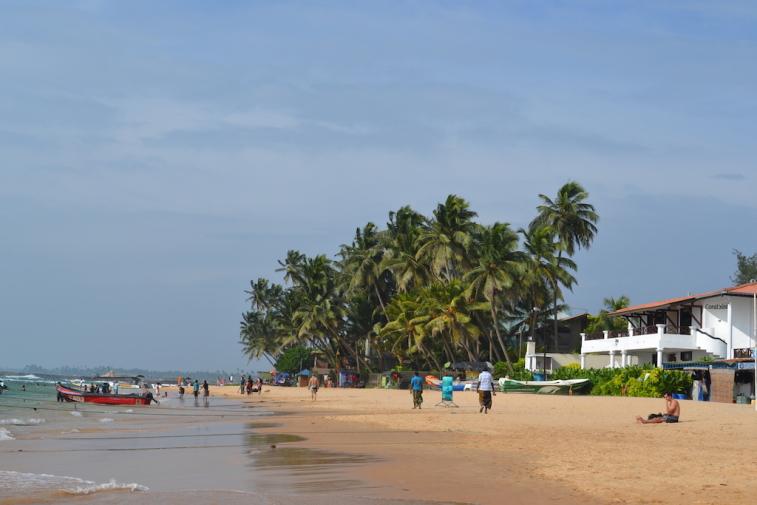 Sri Lanka 2014_5