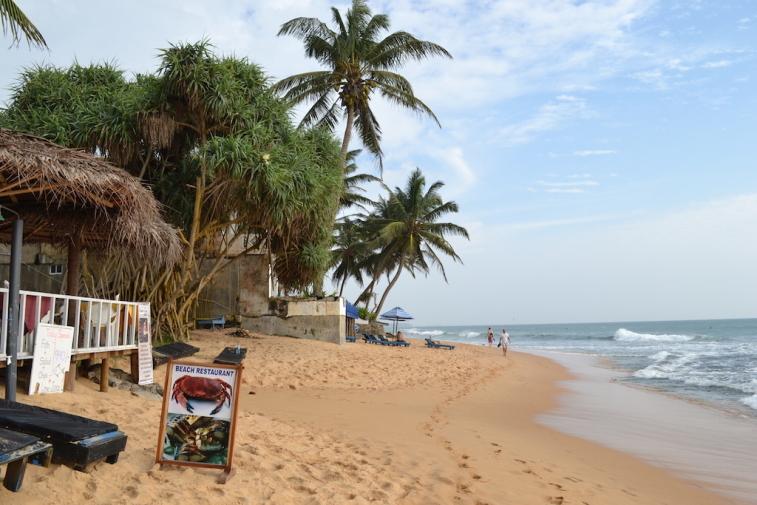 Sri Lanka 2014_8