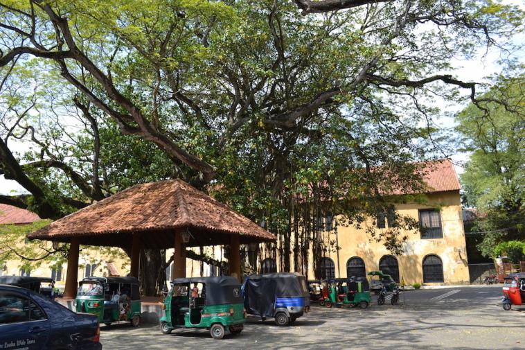 Sri Lanka 2015_Galle 16