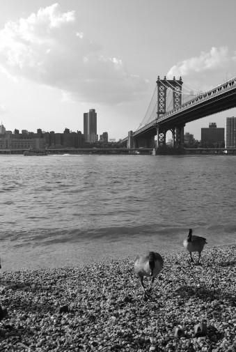 NYC_B&W 63