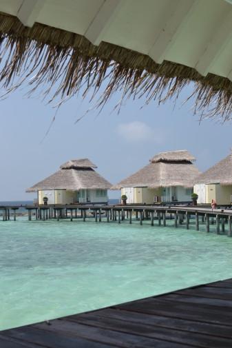 Maldive_28 dec_11