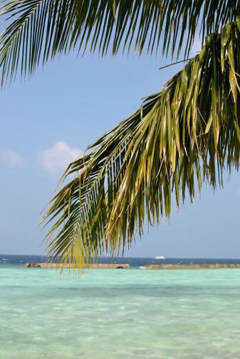 Maldive_culori 34