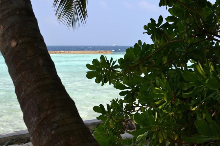 Maldive_culori 39