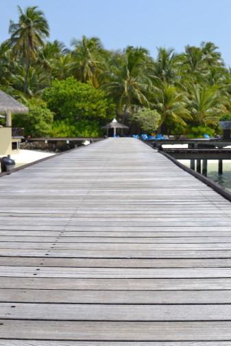 Maldive_culori 9
