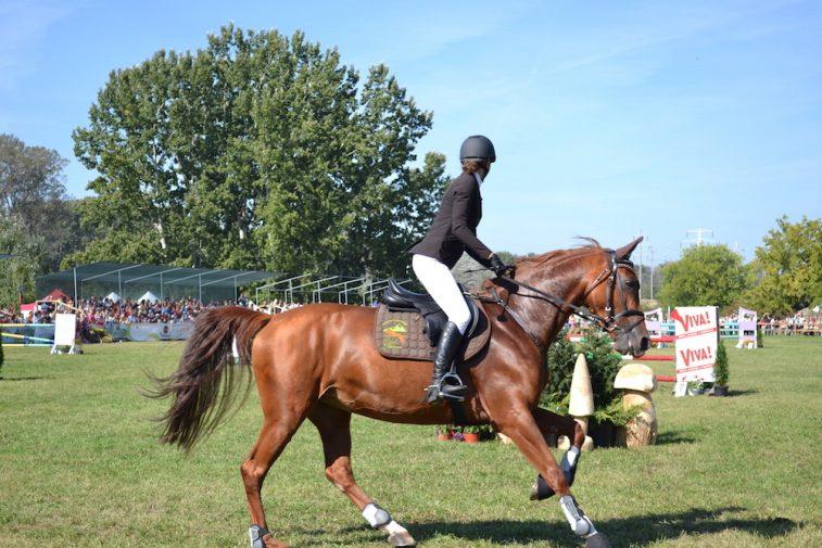 karpatia-horse-show-2016-17